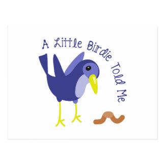 A Little Birdie Told Me Postcard