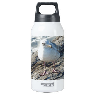 """""""A Little Birdie Told Me That...."""" Template Insulated Water Bottle"""