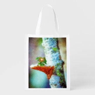 A Little Dragon Sleeps Reusable Grocery Bag