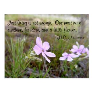 A Little Flower Postcard