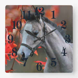 A Little Foal Square Wall Clock