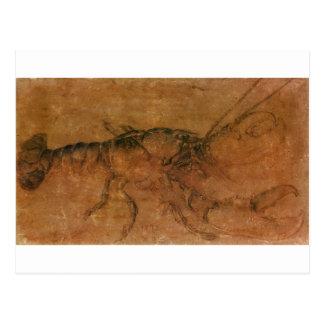 A lobster by Albrecht Durer Postcard