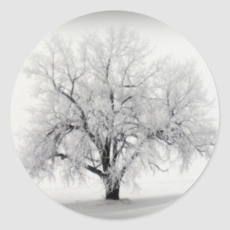 A lone Frostry Tree in the North Dakota Prairie Round Sticker