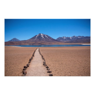 A lonely path photo print