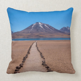 A Lonely Path Throw Pillow