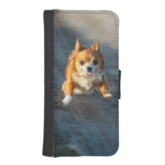 A long haired brown and white Chihuahua Running Phone Wallets
