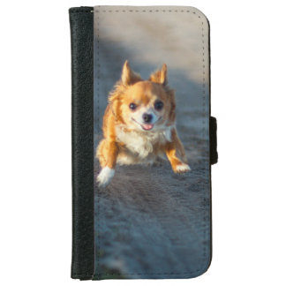 A long haired brown and white Chihuahua Running iPhone 6 Wallet Case
