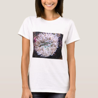 A Long Tentacle Plate Coral T-Shirt