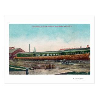 A Long Tree Log on Railroad Tracks Postcard