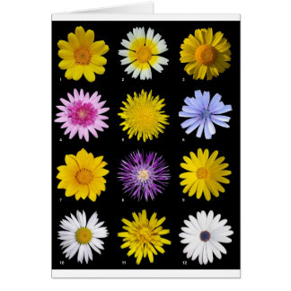 A lot of flowers card