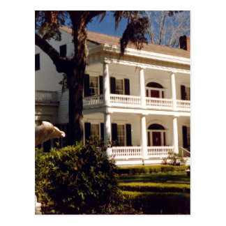 A Louisiana Plantation Postcard