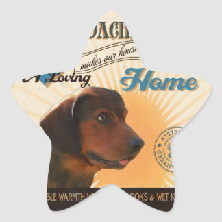 A Loving Affenpinscher Makes Our House Home Star Sticker