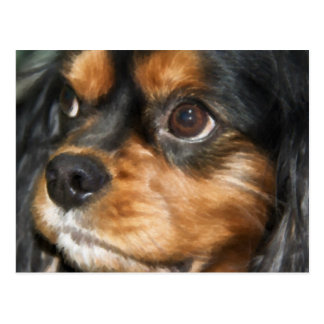 A Loyal Dog Cavalier King Charles Spaniel Postcard