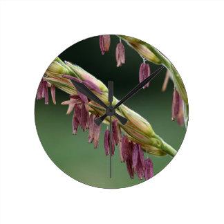 A macro photo of male maize flowers. wall clocks