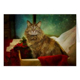 A Magical Christmas Card