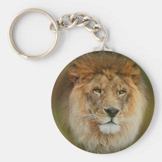 A Majestic lion Basic Round Button Keychain