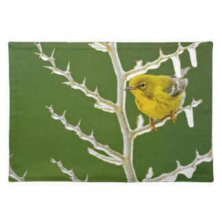 A Male Pine Warbler Perched on an Icy Branch Placemat