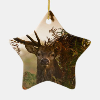 A Male Red Deer Blends in London's Richmond Park. Ceramic Ornament