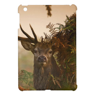 A Male Red Deer Blends in London's Richmond Park. Cover For The iPad Mini