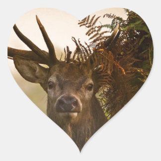 A Male Red Deer Blends in London's Richmond Park. Heart Sticker
