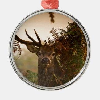 A Male Red Deer Blends in London's Richmond Park. Metal Ornament