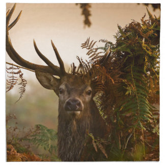 A Male Red Deer Blends in London's Richmond Park. Napkin