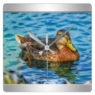 A Mallard Male Duck in the Water Square Wall Clock