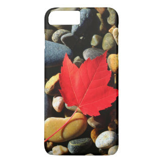 A Maple leaf on a Rock Background iPhone 7 Plus Case