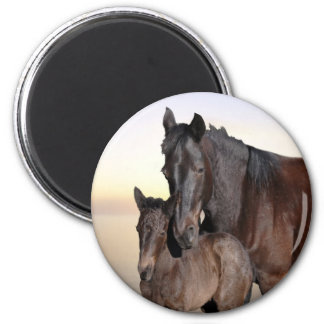 A mare and her baby foal 2 inch round magnet