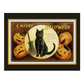 A Merry Halloween Vintage Black Cat and Pumpkins Postcard
