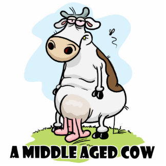 A Middle aged Cow Standing Photo Sculpture