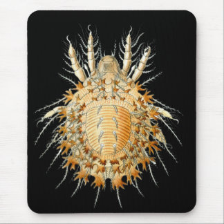 A Mite Mouse Pad