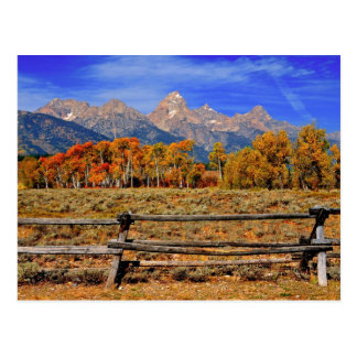 A Moment in Wyoming in Autumn Postcard