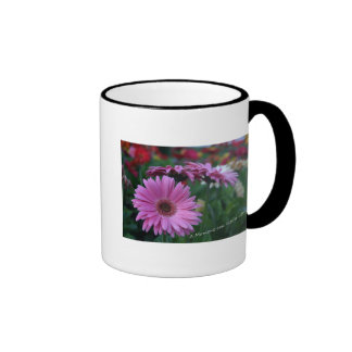 A Moment Pink Gerbera Daisies coffee cup gift Ringer Mug