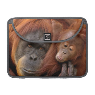 A mother and baby orangutan share a hug. sleeve for MacBook pro
