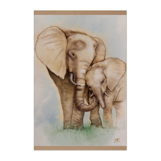 A Mother's Love - Mother and Baby Elephant Acrylic Print