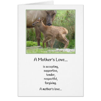 A Mother's Love...New Baby Card