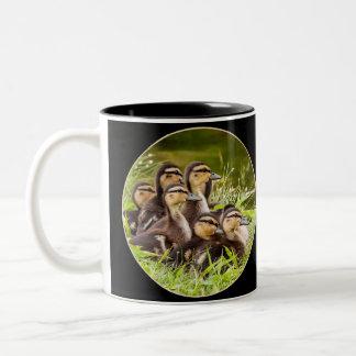 A Mug of Ducklings/Round