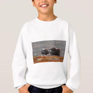 A Musk Ox and Calf Sweatshirt