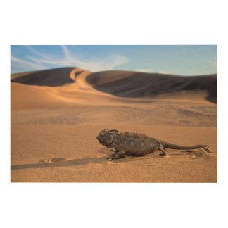 A Namaqua Chameleon walking Wood Print