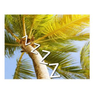 A nap under a palm tree postcard