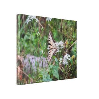 A New Beginning Butterfly Digital Art Canvas Print