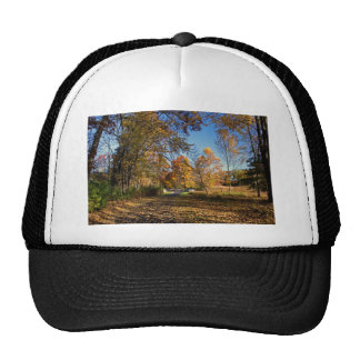 A New Perspective Trucker Hat