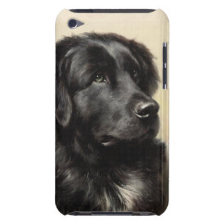 A Newfoundland Barely There iPod Touch Case