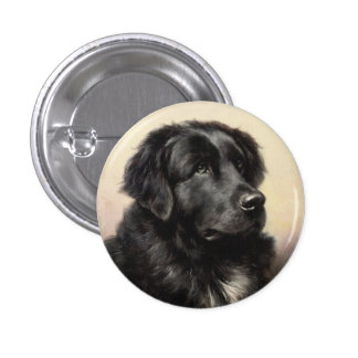 A Newfoundland Button