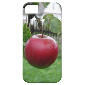 A Nice Juicy Apple iPhone 5 Case