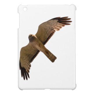 A Northern Harrier soars overhead iPad Mini Case