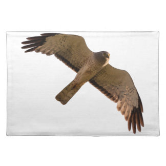 A Northern Harrier soars overhead Placemat