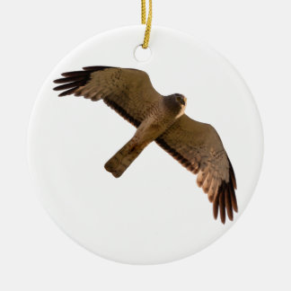 A Northern Harrier soars overhead Round Ceramic Ornament