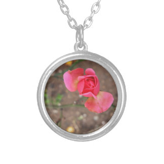 A November rosebud Silver Plated Necklace